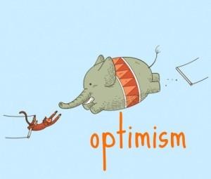 optimism-nzc83trq1-87901-500-425